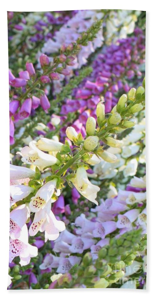 Card Hand Towel featuring the photograph Foxglove Card by Carol Groenen