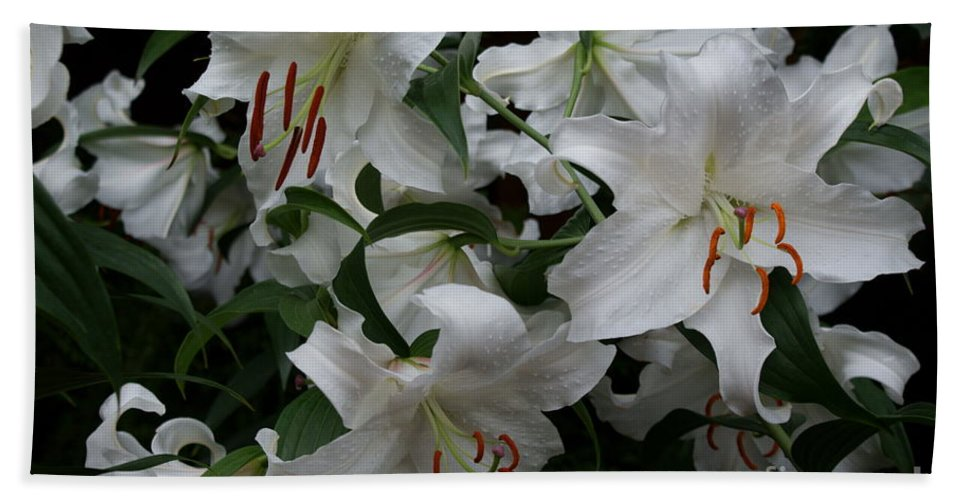 White Lilies Floral Hand Towel featuring the photograph Fragrant Beauties by Joanne Smoley