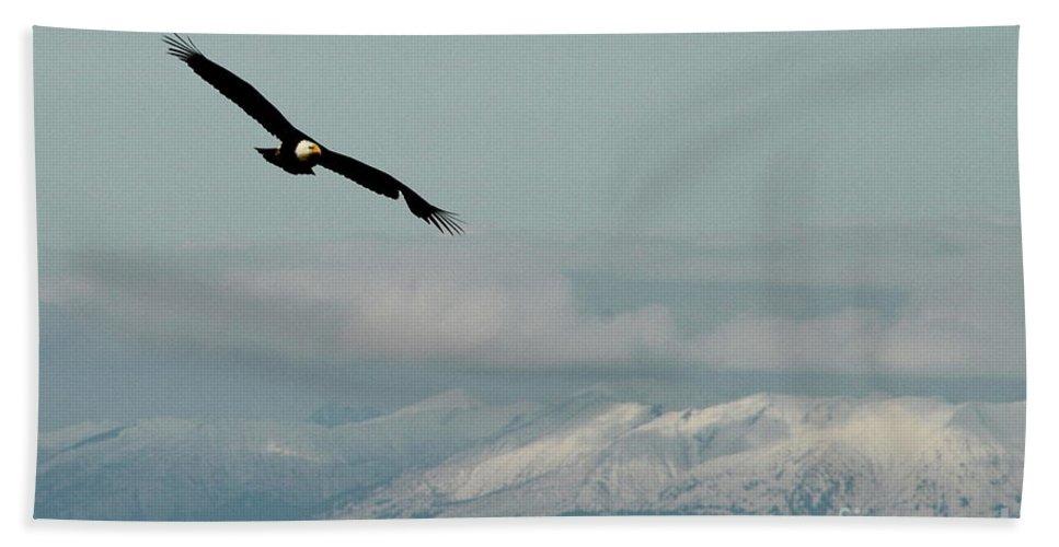 Eagle Bath Sheet featuring the photograph Free Flight by Rick Monyahan