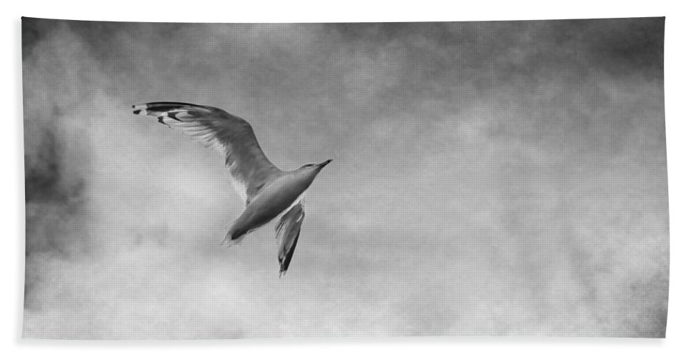 Seagull Hand Towel featuring the photograph Freedom In Black And White by Maggie Terlecki