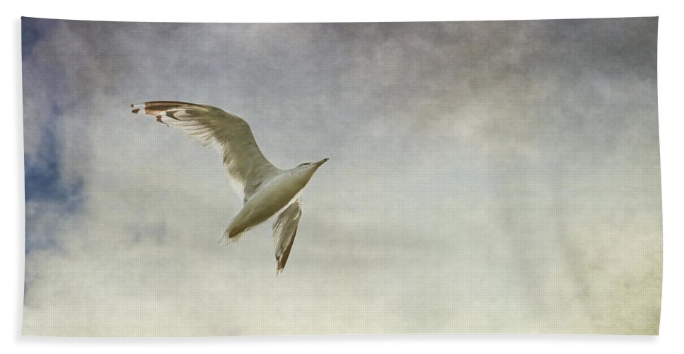 Seagull Hand Towel featuring the photograph Freedom by Maggie Terlecki