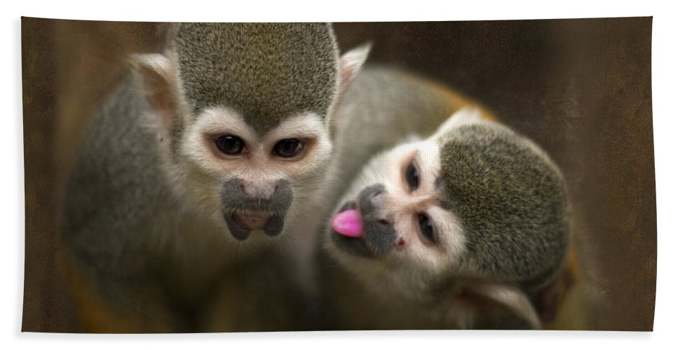 Monkeys Bath Sheet featuring the photograph French Kiss by Angel Ciesniarska