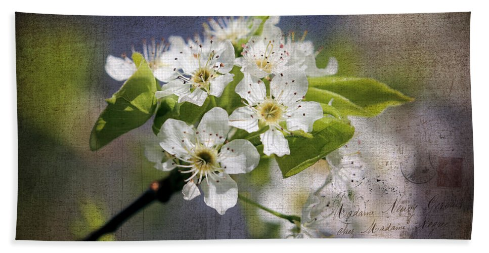 Hawthorn Hand Towel featuring the photograph French Kisses by Theresa Campbell