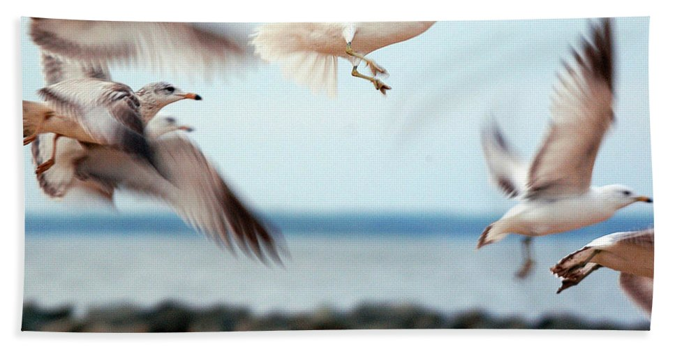 Clay Bath Towel featuring the photograph Frenzy by Clayton Bruster