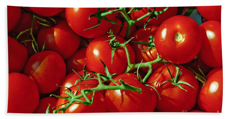 Tomato Bath Sheet featuring the photograph Fresh Tomotos On The Vine by Thomas Marchessault