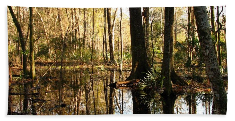 Woods Hand Towel featuring the photograph Friday Hill Reflections 1 by J M Farris Photography