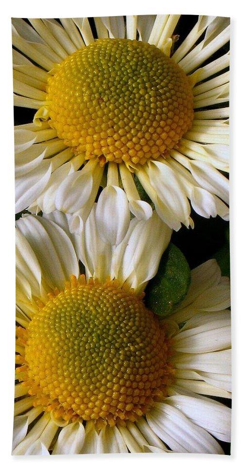 Daisies Bath Sheet featuring the photograph Fried Eggs by Lori Pessin Lafargue
