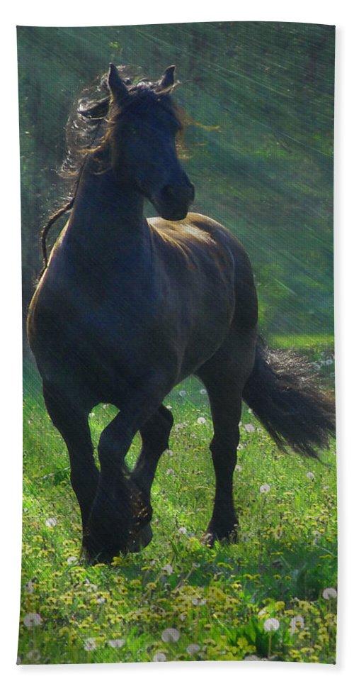 Horses Bath Towel featuring the photograph Friesian Sun by Fran J Scott
