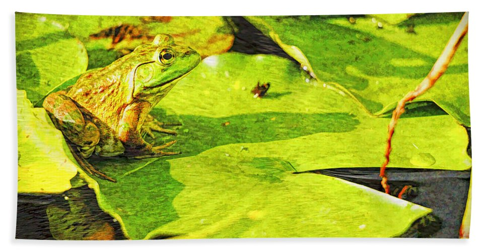 Frog Bath Sheet featuring the photograph Frog On Lily Pad by Geraldine Scull