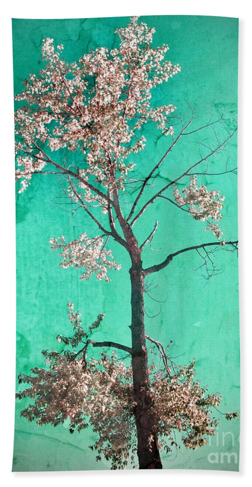Tree Hand Towel featuring the photograph From The Top by Tara Turner