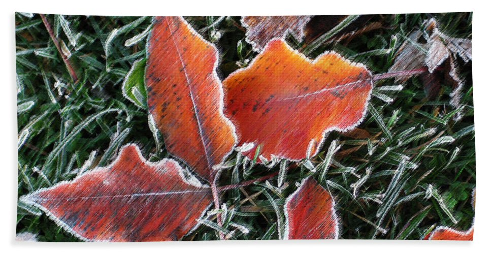 Leaves Fall Leaf Orange Red Nature Digital Art Bath Sheet featuring the photograph Frosted Leaves by Shari Jardina