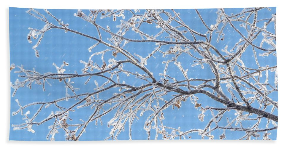 Hoar Frost Bath Sheet featuring the photograph Frosty Branch by Ruth Kamenev