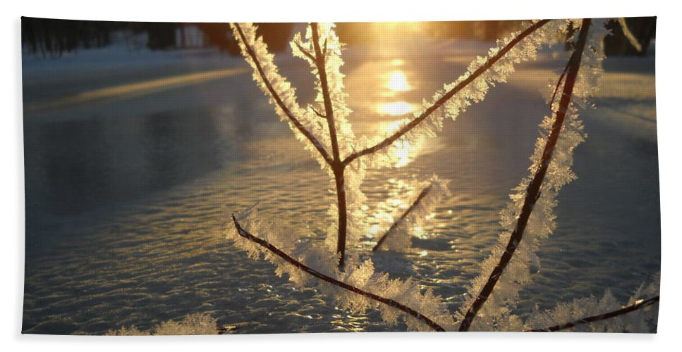 Frost. Branches Bath Sheet featuring the photograph Frosty Branches At Sunrise by Kent Lorentzen