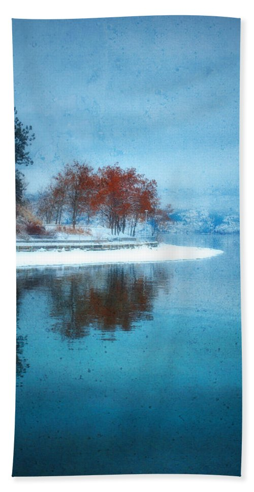 Blue Hand Towel featuring the photograph Frosty Reflection by Tara Turner
