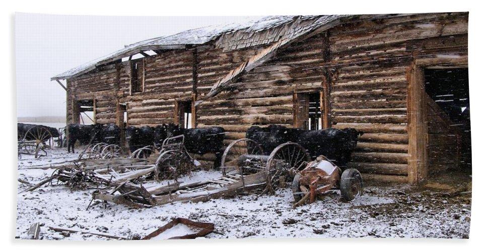 Cattle Bath Sheet featuring the photograph Frozen Beef by Susan Kinney
