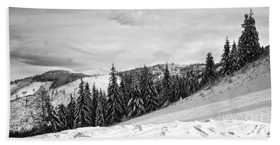 Valley Bath Sheet featuring the photograph Frozen Valley 4 Bw by Alex Art and Photo