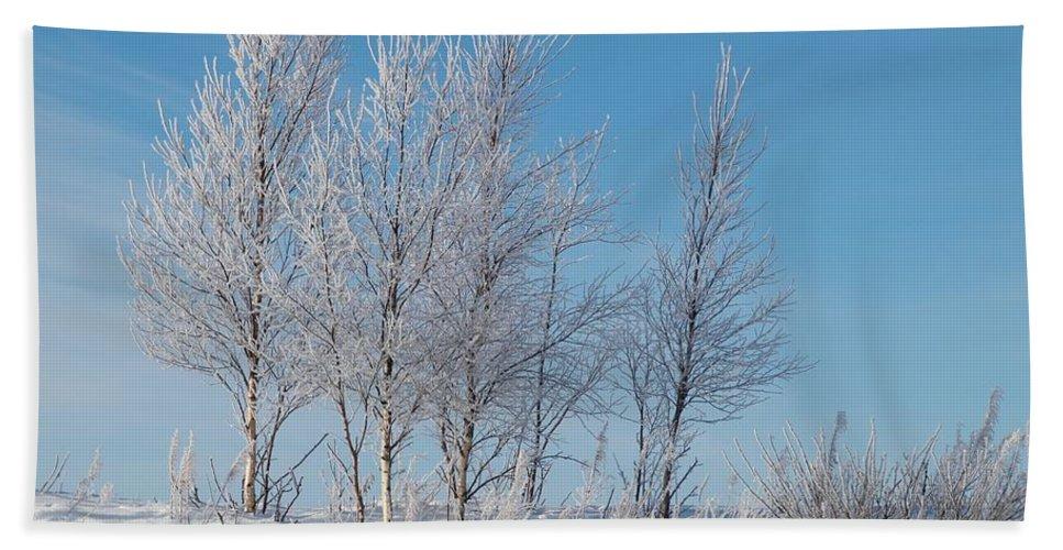 Talvi Bath Sheet featuring the photograph Frozen Views 2 by Jouko Lehto