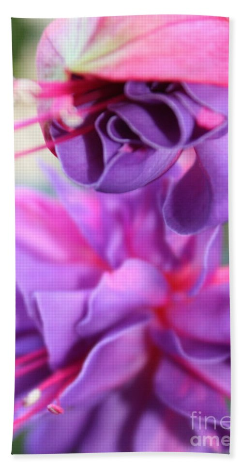 Florals Hand Towel featuring the photograph Fuchsia Drama by Carol Groenen