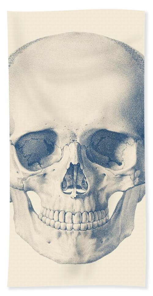 Full Human Skull Front Facing View Bath Towel For Sale By Vintage