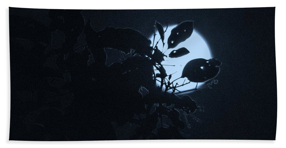 The Moon Hand Towel featuring the photograph Full Moon And Tree by Totto Ponce