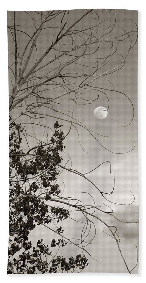 Full Bath Sheet featuring the photograph Full Moon Behind Cottonwood Tree by Marilyn Hunt