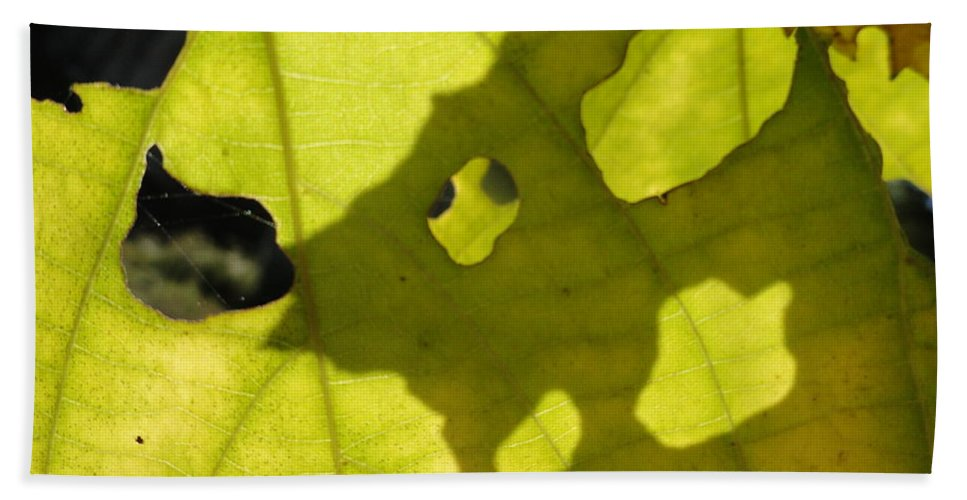 Leaves Bath Sheet featuring the photograph Full Of Hollow by Trish Hale