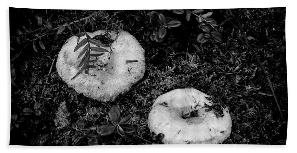 Fungi No 3 Bw Bath Sheet featuring the photograph Fungi No 3 Bw by Phyllis Taylor