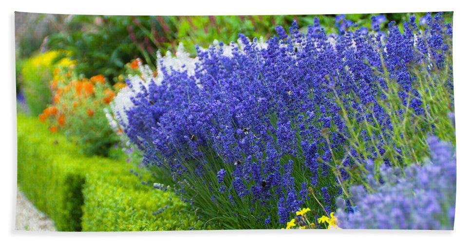 Blue Bath Sheet featuring the photograph Garden Flowers by Svetlana Sewell