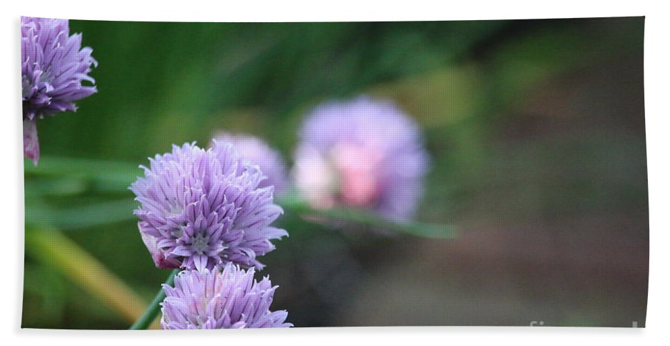 Flower Hand Towel featuring the photograph Garden Fresh Chives by Susan Herber