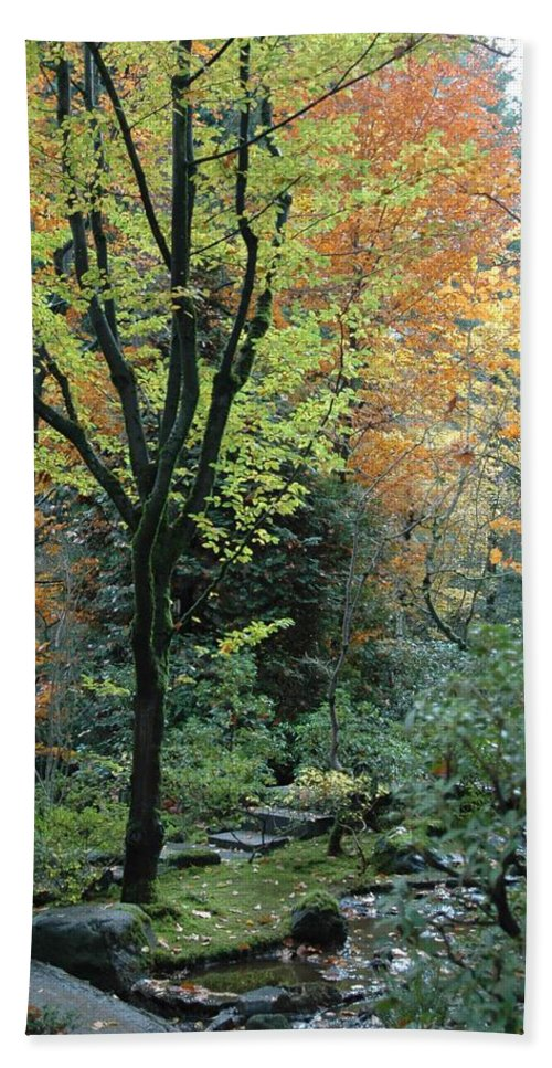 Fall Bath Sheet featuring the photograph Garden Trees by Sara Stevenson