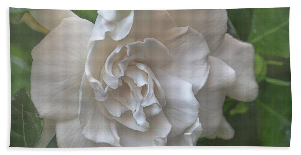 Gardenia Hand Towel featuring the photograph Gardenia Blossom by Teresa Wilson