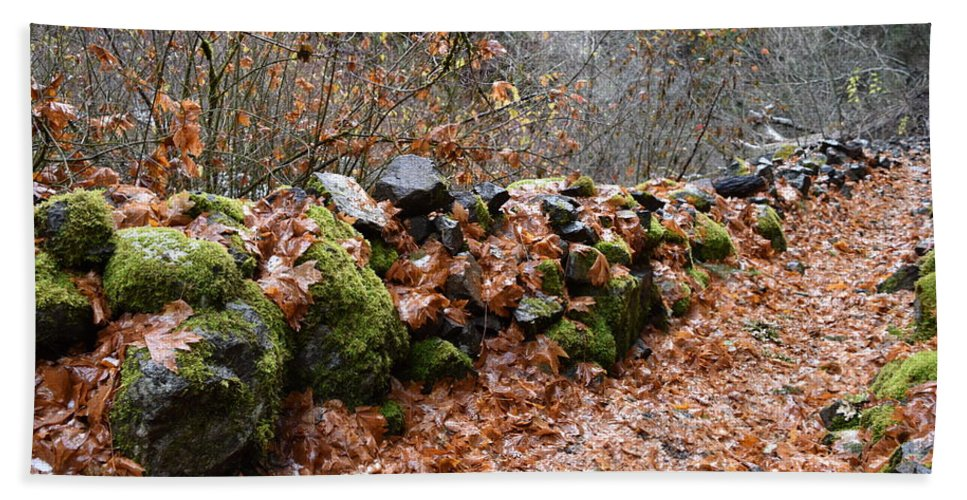 Rocks Bath Sheet featuring the photograph Gather No Moss by Thomas Sexton