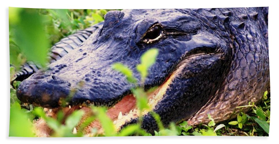 Aligator Bath Sheet featuring the photograph Gator 1 by Marty Koch