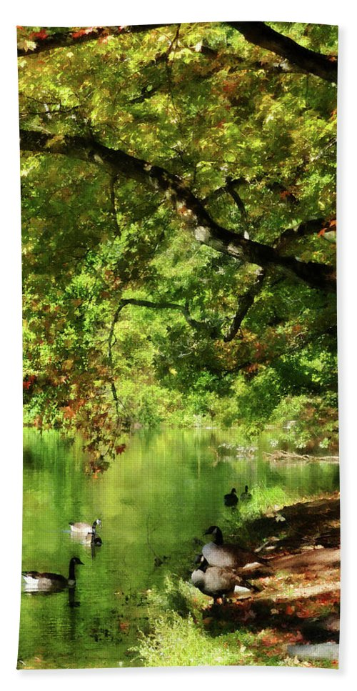Goose Hand Towel featuring the photograph Geese By Pond In Autumn by Susan Savad