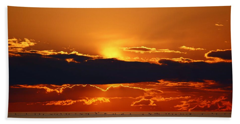 Sunset Hand Towel featuring the photograph Geese Line The Horizon by Joanne Smoley