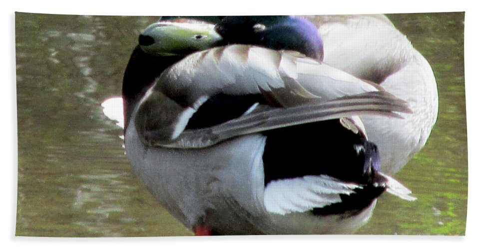 Geese Hand Towel featuring the photograph Geese Lovers by Madonna Tanael