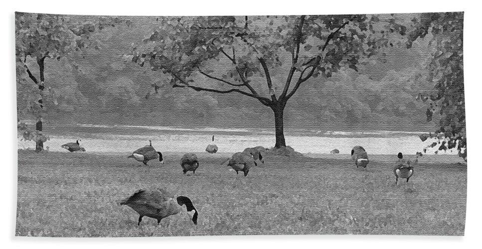 Philadelphia Hand Towel featuring the photograph Geese On A Rainy Day by Bill Cannon