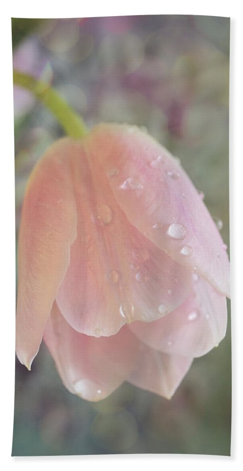 Gentle Bath Sheet featuring the photograph Gentle Flower Bow by Lilia D