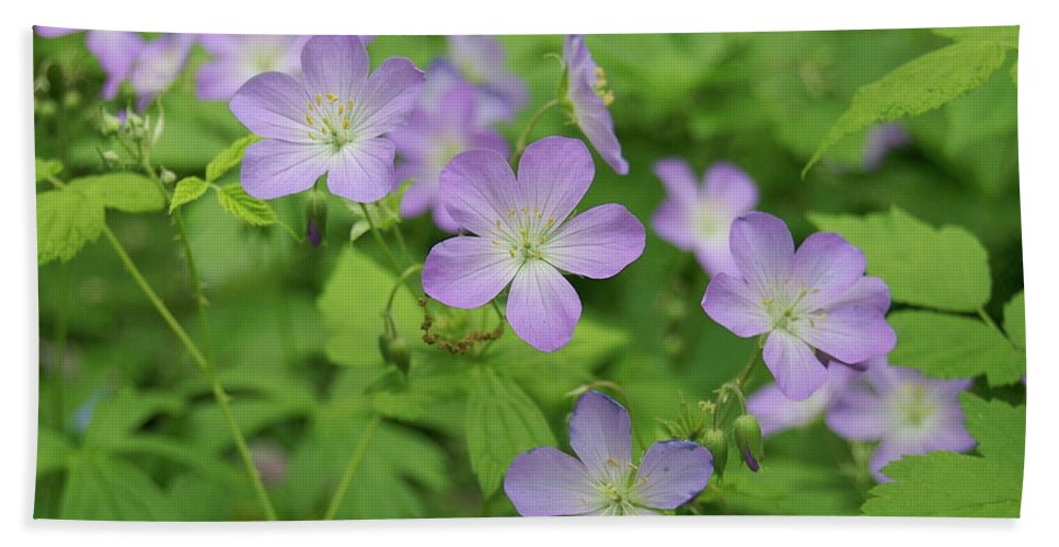 Flowers Hand Towel featuring the photograph Geraniums Spring Wildflowers by Michael Peychich