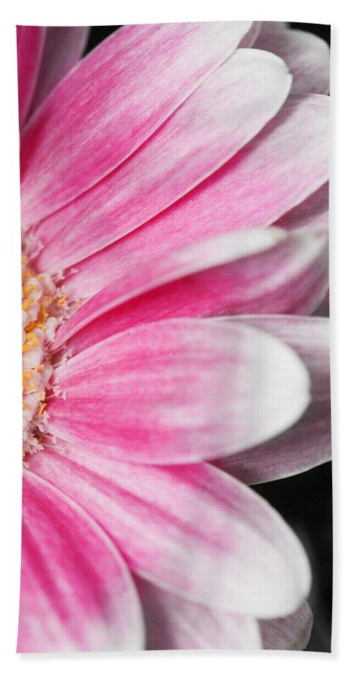 Daisy Bath Sheet featuring the photograph Gerber Daisy by Karen Ulvestad