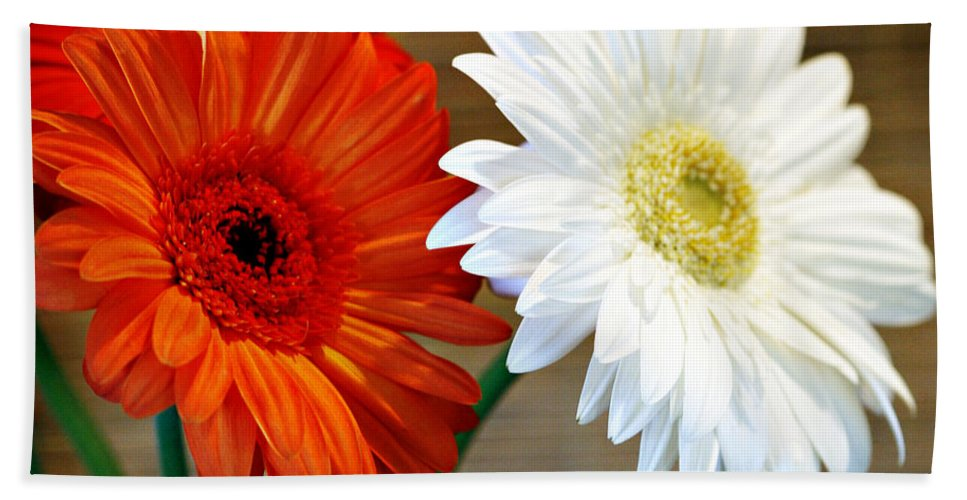 Flower Bath Towel featuring the photograph Gerbers by Marilyn Hunt