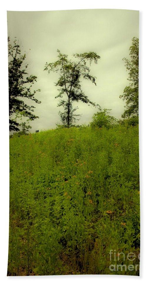 Landscape Bath Sheet featuring the photograph Gettysburg Landscape by Madeline Ellis