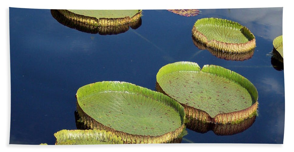 Lily Pad Hand Towel featuring the mixed media Giant Lily Pads by Carol Cavalaris