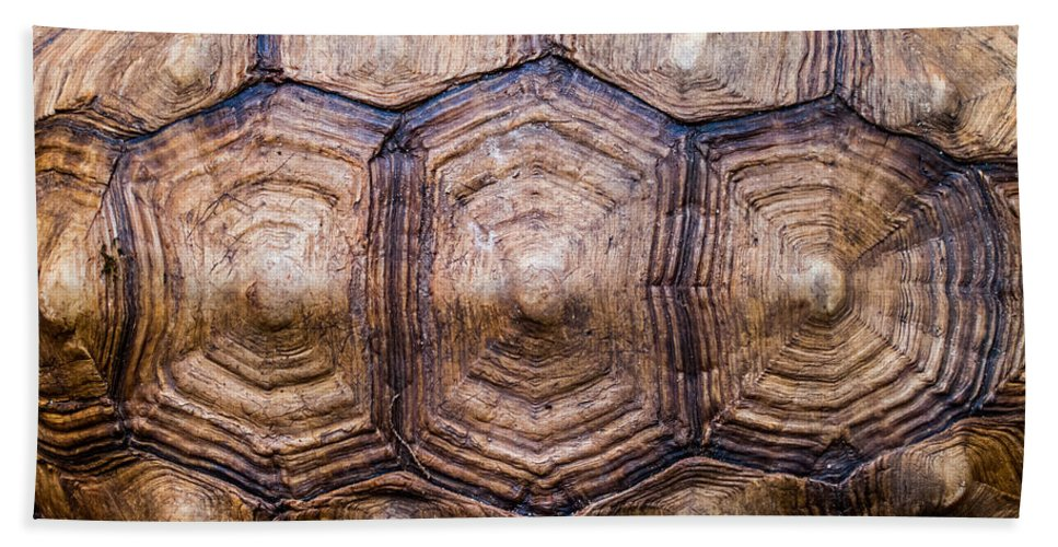 Tortoise Hand Towel featuring the photograph Giant Tortoise Carapace by Hakon Soreide