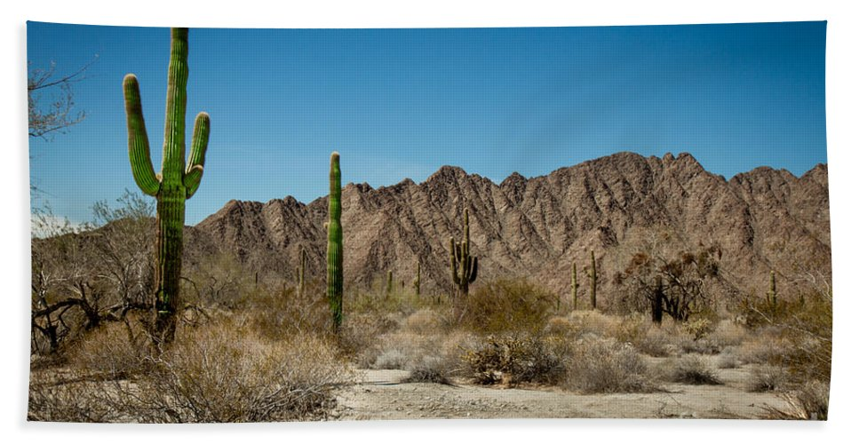 Arizona Hand Towel featuring the photograph Gila Mountains And Sonoran Desert by Robert Bales