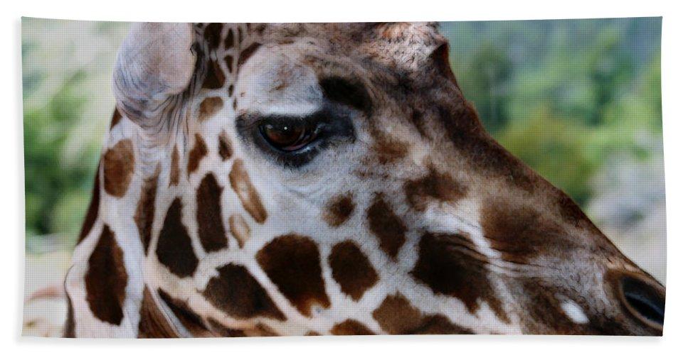 Wildlife Bath Towel featuring the digital art Giraffe by Anthony Jones