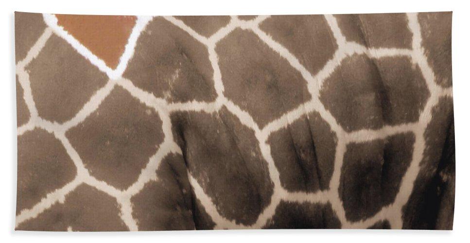 Grraffe Bath Sheet featuring the photograph Giraffe Love by September Stone