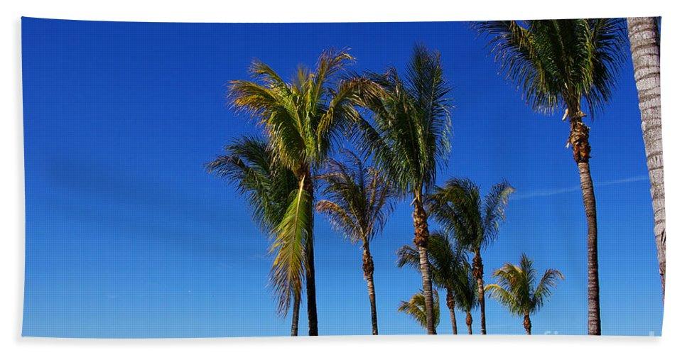 Palm Bath Sheet featuring the photograph Glorious Palms by Zal Latzkovich