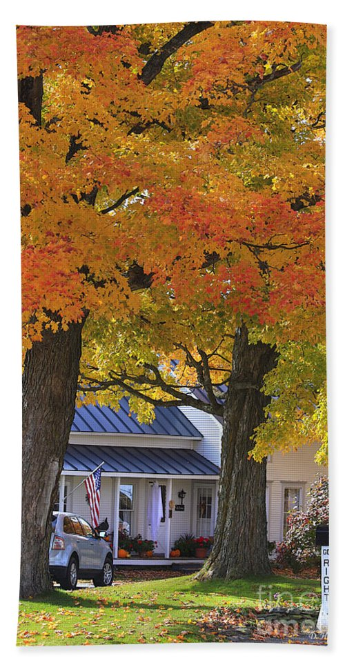 Fall Hand Towel featuring the photograph Go Right Please by Deborah Benoit