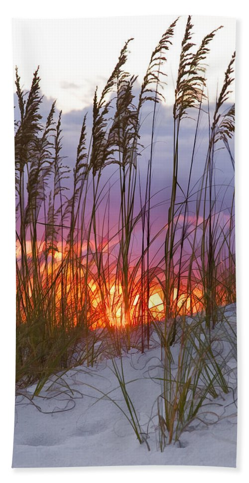 Sea Oats Hand Towel featuring the photograph Golden Amber by Janet Fikar